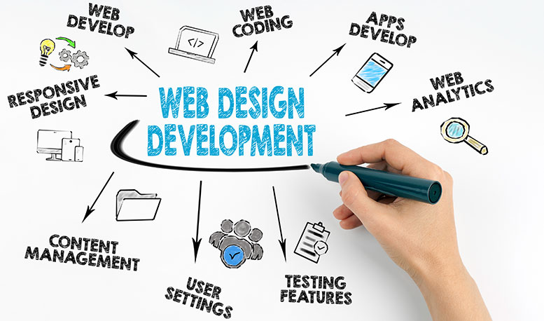 How to choose the best web designing and web development