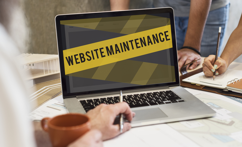 Website Maintenance by Professionals